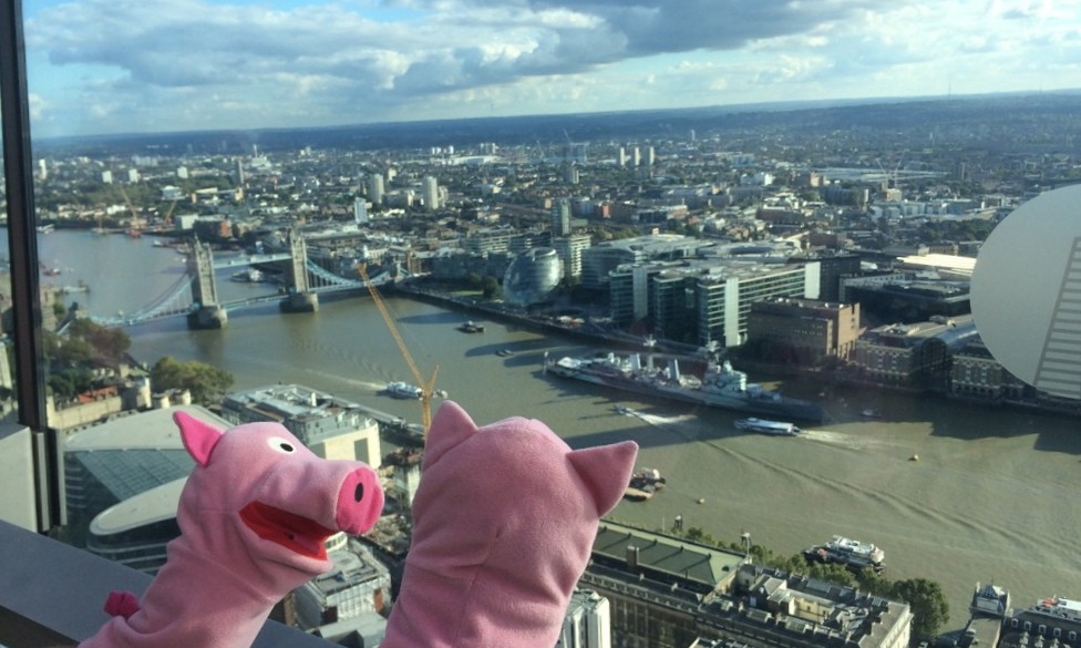 Aussicht auf die Thames und Tower Bridge: Schweine beeindruckt!