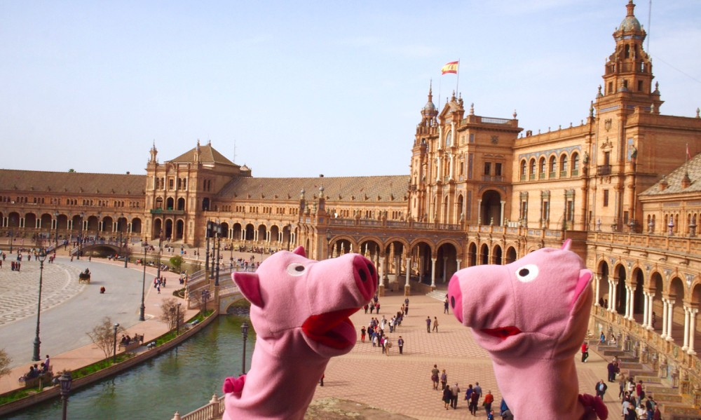 Die Schweine schauen sich etwas für die Gestaltung des Platzes vor dem Stall im Bergischen ab.