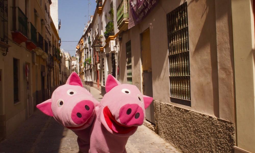 Die Schweine machen eine Polonaise zur nächsten Sehenswürdigkeit. Die gibt es nächste Woche zu sehen!